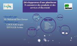 Mémoire de projet d'observation EMSI