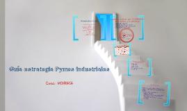 Guía Pymes Industriales - Caso: MONRASA