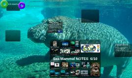6/10 (MB) Sea Mammal NOTES