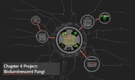 Chapter 4 Project: Bioluminescent Fungi