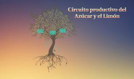 Circuito productivo del Azúcar y el Limón