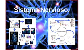 Copia de Sistema Nervioso