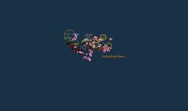 La Batalla de Flores
