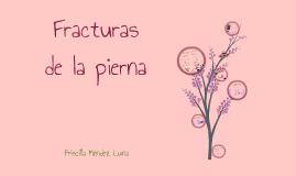 FRACTURAS DE LA PIERNA