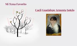 Caeli Guadalupe Armenta Sotelo