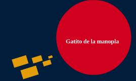 Mittens Gatito