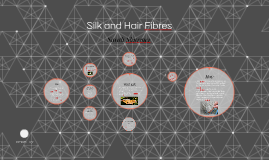 Copy of Silk and Hair Fibres