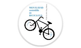 Movilidad en bicicleta Portal de la 80- Peaje siberia