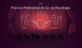 Copy of Práctica Profesional