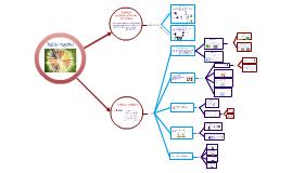 Copy of tejidos vegetales