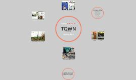 TOWN Internship