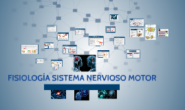 Copy of FISIOLOGIA SISTEMA NERVIOSO MOTOR