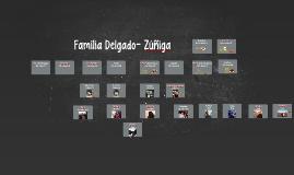 Familia Delgado- Zúñiga