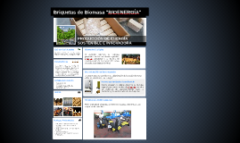"""Briquetas de Biomasa """"BIOENERGÍA"""""""