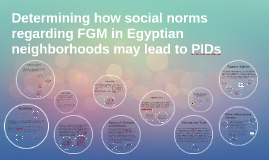 Determining how social norms regarding FGM in Egyptian neigh