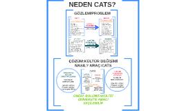CATS: ÖĞRETME/ÖĞRENME ARACI