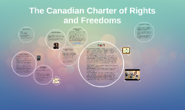 the charter for liberties plus freedoms article checker