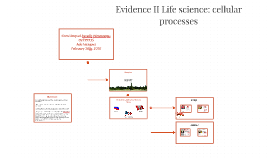 Evidence II Life science: cellular processes