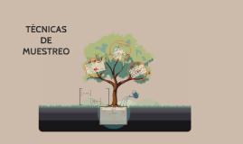 Copy of TECNICAS DE MUESTREO