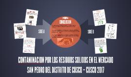 CONTAMINACION POR LOS RESIDUOS SOLIDOS EN EL MERCADO SAN PED