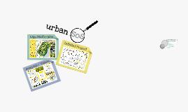 Urban SOS Presentation #2