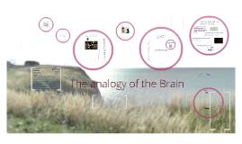 The Brain Analogy