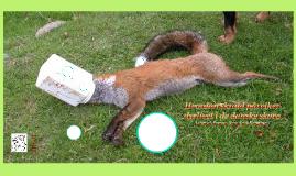 Hvordan skrald pårviker dyrlivet i de danske skove