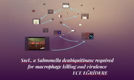 SseL, a Salmonella deubiquitinase required