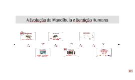 Copy of A Evolução da Mandíbula e Dentição Humana
