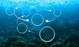Copy of Copy of Ocean Template