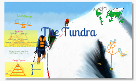Copy of The tundra