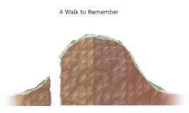 A Walk to Remember Plot Diagram