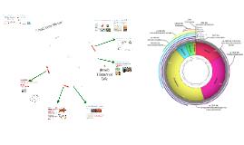 Copy of AP Bio- Evolution 6:  Brief History of Life