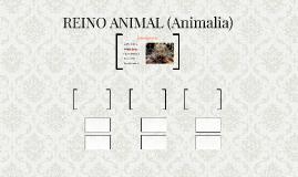 REINO ANIMAL (Animalia)