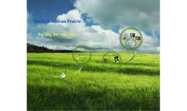 North American Prairie