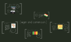 Niger and Cameroon