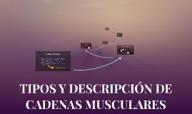 Copy of TIPOS Y DESCRIPCIÓN DE CADENAS MUSCULARES