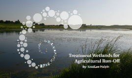 Copy of Treatment Wetlands in Agriculture