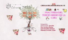 FRACTURAS DEL  TERCIO MEDIO DE LA CARA