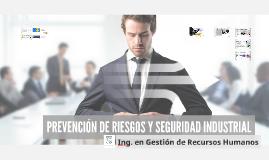 PREVENCIÓN DE RIESGOS Y SEGURIDAD INDUSTRIAL