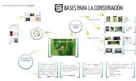 02 - BASES PARA LA CONSERVACCIÓN