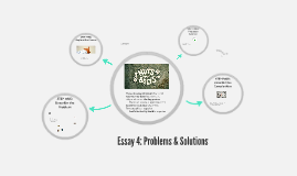 Essay 4: Problems and Solutions