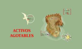 Copy of ACTIVOS AGOTABLES