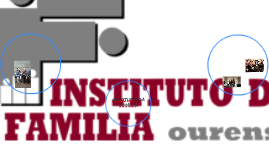 INSTITUTO DA FAMILIA