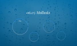 06.05 Mollusks