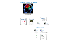 Copy of The Brain, Learning and Mindset