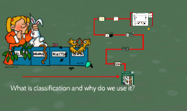 Classification and its benefits - 4th grade