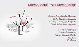 Copy of BIOMOLECULAS Y MACROMOLECULAS