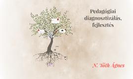 Pedagógiai diagnosztizálás, fejlesztés