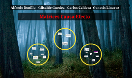 Copy of Matrices Causa-Efecto